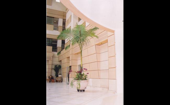 107-Lanka-Hospitals-05