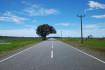 Kahatagasdigiliya-Konwewa-Demetawewa Road