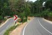 Thihagoda – Kamburupitiya – Mawarala – Kotapola Road