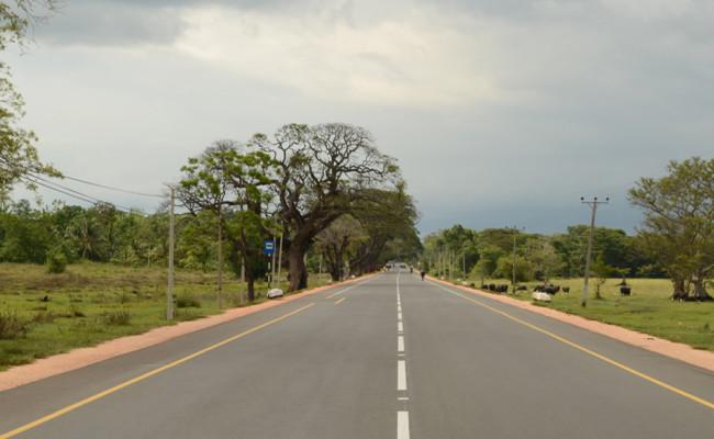 151-thonigala–galkulama-road-04
